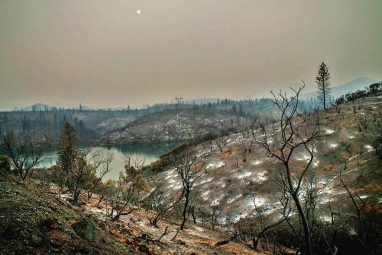 Post Wildfire Hazards